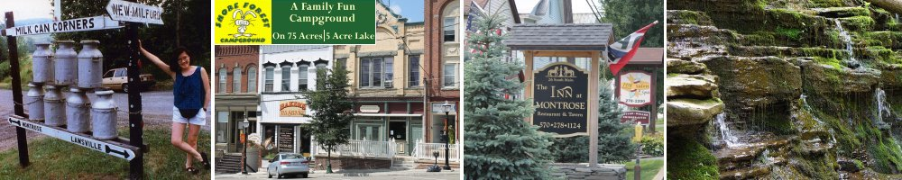 Restaurants Near Montrose Pa